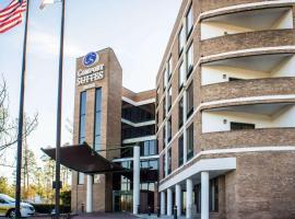 Comfort Suites Raleigh Durham Airport/RTP, hotel in Durham