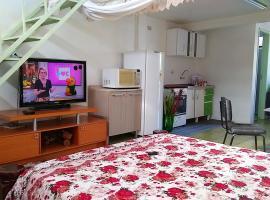Suite Fernandez, apartment in Foz do Iguaçu