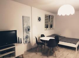 BoleslaviaApartments - Apartament Simon ozonowany po każdym pobycie, self catering accommodation in Bolesławiec