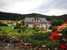 Gästehaus Ursula, homestay in Hornberg