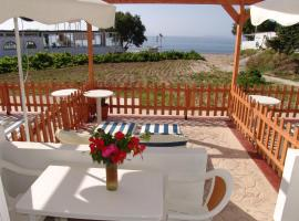 Irene Studios, pet-friendly hotel in Kefalos