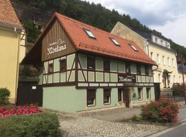 Ferienhaus Montana, apartment in Bad Schandau
