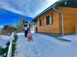 Mountain forrest cabin Gorski Kotar, cabin in Brestova Draga