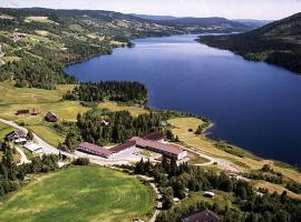 Valdres Høyfjellshotell, hotell i nærheten av Golsfjellet i Steinsetbygdi