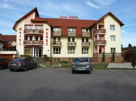 Hotel Mures, hotel din Topliţa