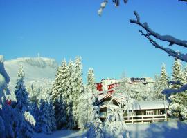 Thon Hotel Skeikampen, hotell i nærheten av Skeikampen i Svingvoll