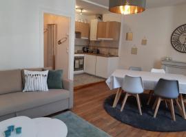 Cosy T2 38m2 - Centre-Ville Dijon- Gare/Darcy, apartment in Dijon