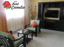 Suite Hotel Camelia, hotel in San Vicente de Cañete