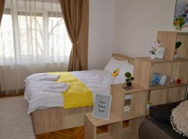 Central apartment with BIG room, WiFi, TV, Washer, hotel din Timișoara