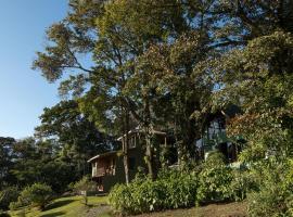 Hotel Flor de Bromelia, hotel en Monteverde