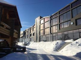 Baikal Loft Studio, self catering accommodation in Listvyanka