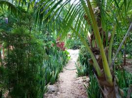 Jungle Oasis, hotel in Tulum