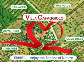 Villa Cafaggiolo apt MICHELANGELO, villa in Florence