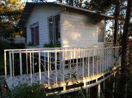 Nhà trên cây, nhà nghỉ B&B ở Đà Lạt