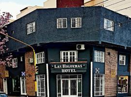 Hotel las Higueras Salta, hotel in Salta