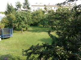 House in center of Gospic with big garden, hotel in Gospić