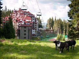 Complex Kamelia, serviced apartment in Pamporovo