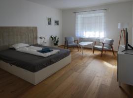 Flataid Apartmenthaus Brauhausstrasse, apartment in Graz