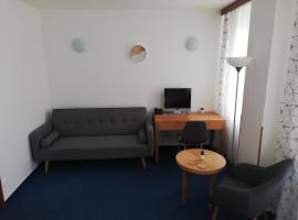 Apartments Lipno Spirit, hotel near Lipno Dam, Frymburk