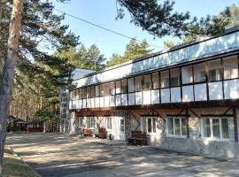 База отдыха Журавель, отель в Кемерово