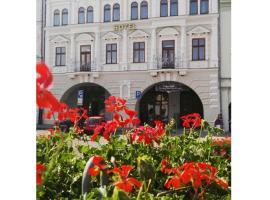 Hotel Zlatý Anděl, hotel in Žatec
