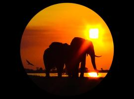 Elephant Trail Guesthouse and Backpackers, guest house in Kasane