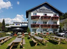 Hotel Winterberg Resort, hotel em Winterberg