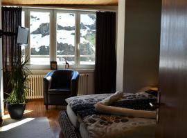 Hotel Badus, hotel in Andermatt