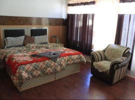 Hotel Dolma Residency, hotel in Leh