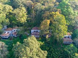 The Tall Trees, luxury hotel in Munnar