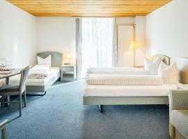Hotel-Restaurant Bellevue, отель во Флимсе