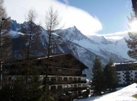 Studio Les Drus / Studio du Brévent, hotel near Chamonix - Planpraz Ski Lift, Chamonix