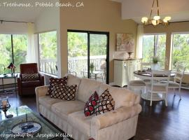 Pebble Beach Tree House Views of the Ocean Vaulted Ceilings Close to Everything, vacation rental in Monterey