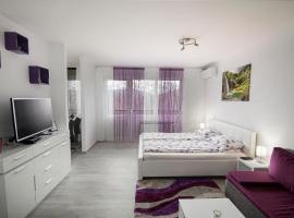 Studio Blue Ivy, hotel near Jezerce - Mukinje Bus Station, Plitvička Jezera
