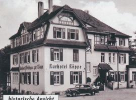 Hotel zur Köppe, Hotel in Bad Klosterlausnitz