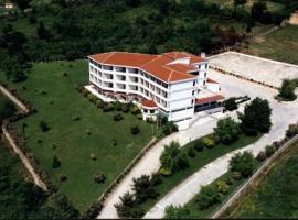 King Alexander, hotel in Florina