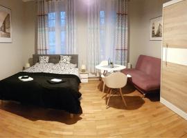 Czarna Owca- Pokoje Gościnne, family hotel in Gniezno