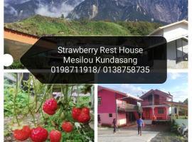 Strawberry Rest House Mesilou Kundasang, homestay in Kundasang