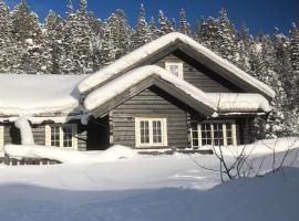 Kilen Lodge, hotell i nærheten av Gaustatoppen i Gaustablikk