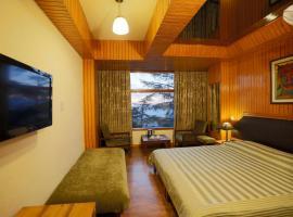 Hotel Shingar, hotel in Shimla