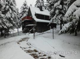 Waldhaus, Ski- und Wanderhütte, Hotel in Breitenbrunn