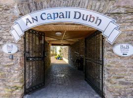 An Capall Dubh B&B Dingle, bed & breakfast a Dingle