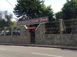 Hotel Oxib Peck, hôtel à Cobán