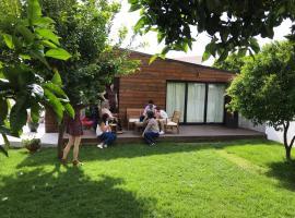 Casa do Muro, alojamento para férias em Coimbra
