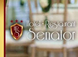 Hotel Senator, hotel din Slatina