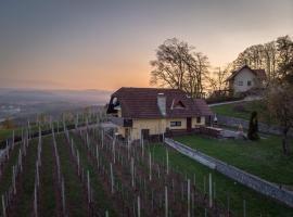 Vineyard cottage Hočevar, hotel v mestu Novo Mesto
