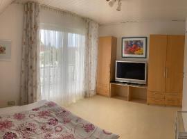 Schöne Zimmer im Zentrum Leben, homestay in Offenburg