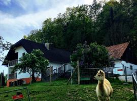 Cria Valley Alpacas, budget hotel in Riegersburg