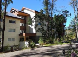 Pucón/stgo. downtown apartments, hotel en Pucón