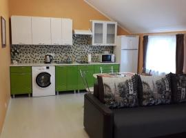 "Апартаменты ""Petrovski"" с двориком для барбекю, apartment in Vyborg"